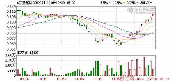 鹏博士股吧:*ST鹏起B关于公司股票交易风险提示公告